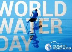 বিশ্ব জল দিবস: নদীর জল ও কিছু কথা- তুহিন শুভ্র মন্ডল