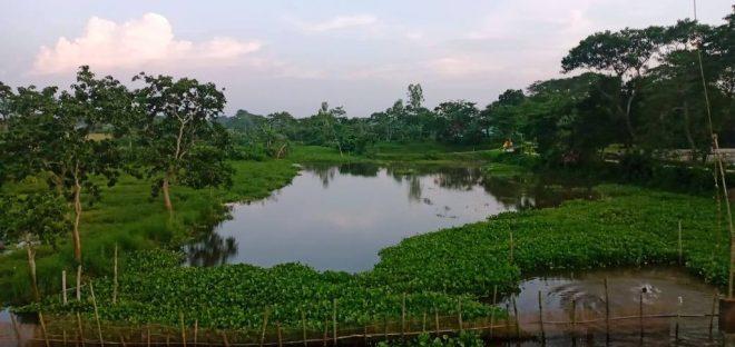 সিঙ্গুয়া নদী